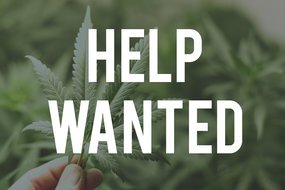 HOW TO GET A JOB IN THE MARIJUANA INDUSTRY COURSE 100-J